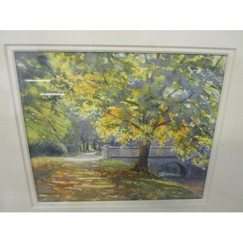 40 - A group of watercolours to include one by Valeric Petts  - Addisons Walk Magdalan, Oxford, 6 5/8