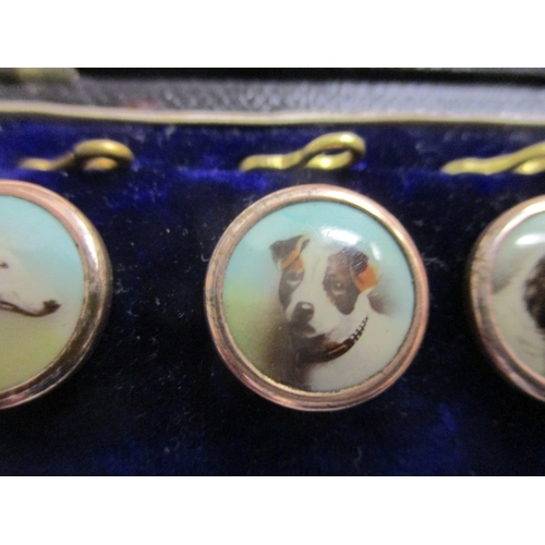 12 - Six cased shirt buttons, each decorated with the head of a dog...