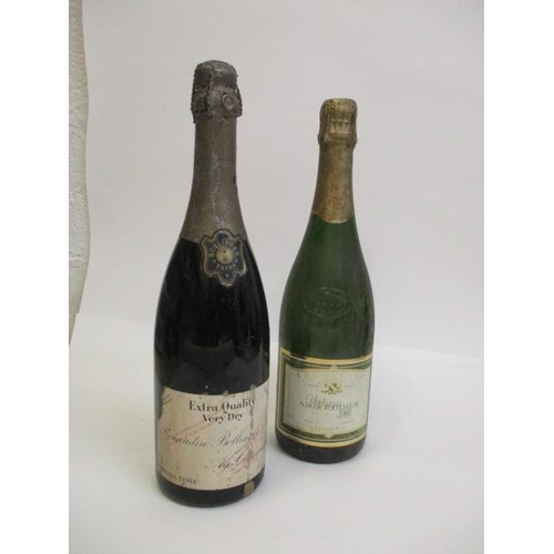 131 - A bottle of Renauden Bollinger & Co Extra Quality very dry and a bottle of Alain Rodier Millennium 2...