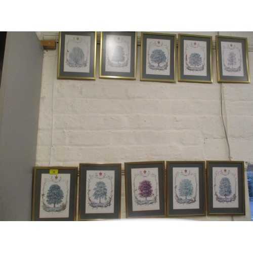 489 - Ten framed and glazed prints depicting a silver birch tree for the Queen  Location C...