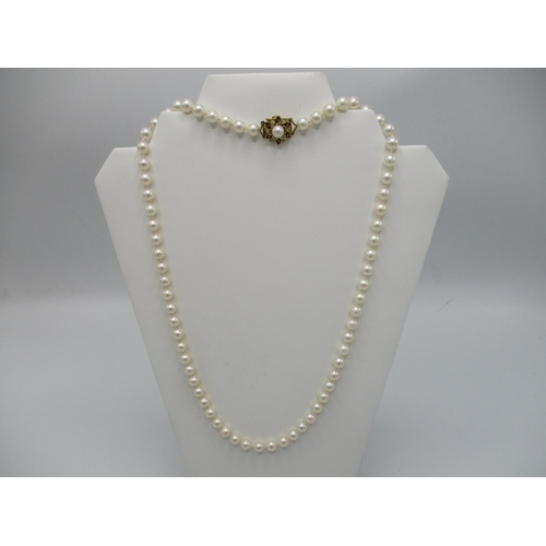 23 - A cultured pearl necklace with an 18ct  gold pearl/diamond and ruby set clasp, 24 1/2