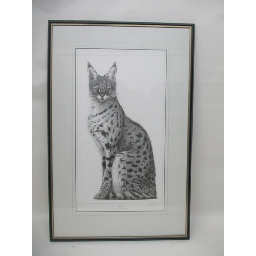 258 - Gary Hodges - Elegance, a study of a Cheetah cub, limited edition print 766/850, signed in pencil, 2...