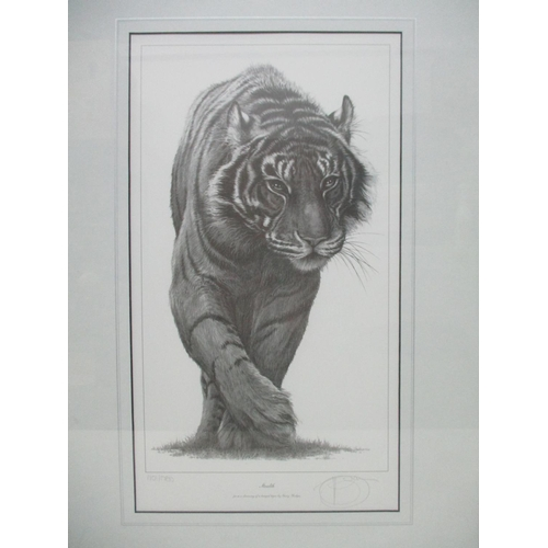 260 - Gary Hodges - 'Stealth', a study of a tiger limited edition print 110/1250 signed in pencil, 17