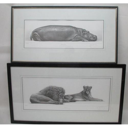 259 - Gary Hodges - 'Tropical Slumber' a study of a hippopotamus, limited edition print 695/850, 7 1/2