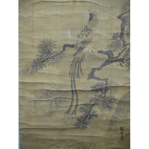 17 - An 18th/19th century Chinese scroll depicting an exotic bird perched on a branch, watercolour signed...