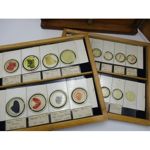 217 - Approximately one hundred and fifty microscope slides to include examples with labels by Richard Sut...