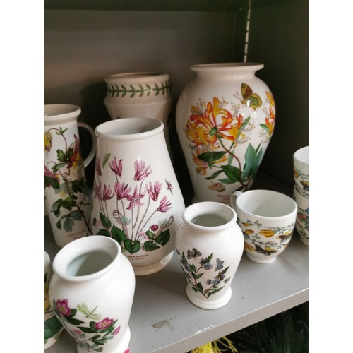 64 - A large collection of Portmeirion Botanic Garden porcelain vases and storage jars, bowls, jug, rolli...