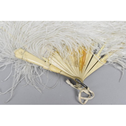 167 - Two large 1900s ostrich feather fans, to include a tortoiseshell mounted one with brown feathers, 56...