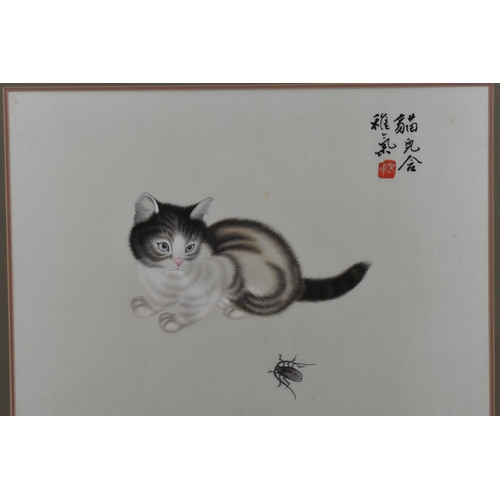 54 - A 20th century Chinese silk embroidery of a kitten, signed with red embroidered seal, within a glaze...