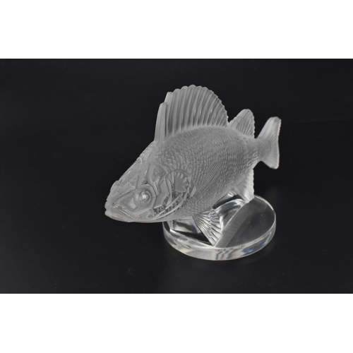 17 - A René Lalique clear and frosted glass Perche Poisson / Perch Fish car mascot, model number 1158, wi...