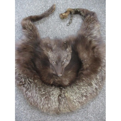 31 - A Saga Scandinavian brown mink coat, purchased from Greece in the 1980's, 40