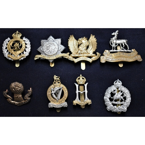 307 - British Cap Badges (8) Including: 23rd Hussars, Royal Warwickshire, Royal Engineers, Earl of Carrick...