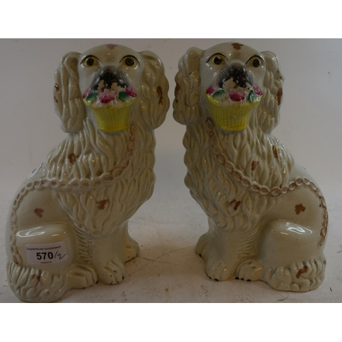 570 - A pair of Staffordshire pottery spaniels, with baskets, 23 cm high (2)...