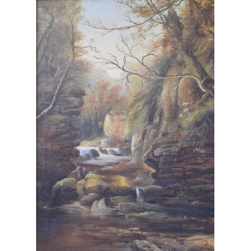 775 - English school, late 19th/early 20th century, a river gorge, oil on canvas, 68 x 49 cm...