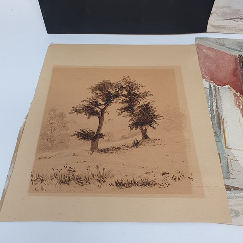 87 - English school, early 20th century, study of a bird of prey, watercolour, 23 x 16 cm, unframed, port...