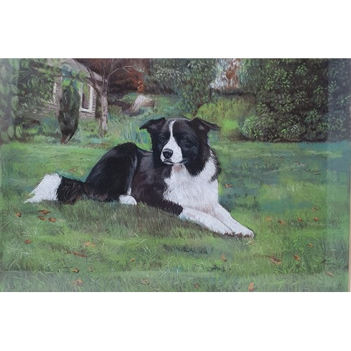 190 - English school, 20th century, a portrait of a border collie, pastel, 22 x 33 cm, and an early 20th c...