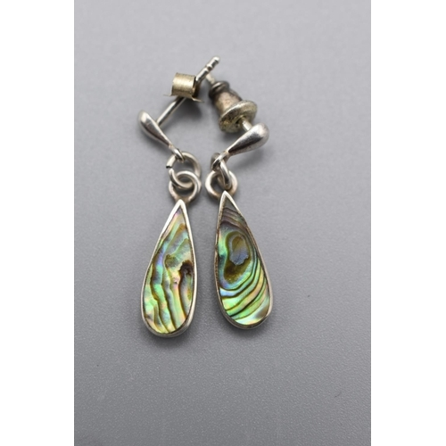 59 - Pair of Silver and Paua Shell Earrings in Presentation Box