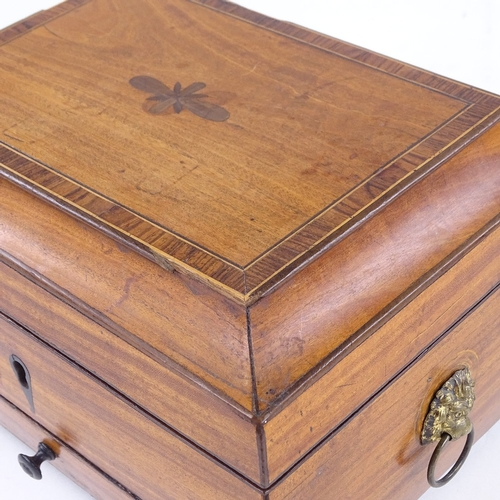 156 - A Regency satinwood jewel box, with brass lion ring handles and lion paw feet, width 22cm...