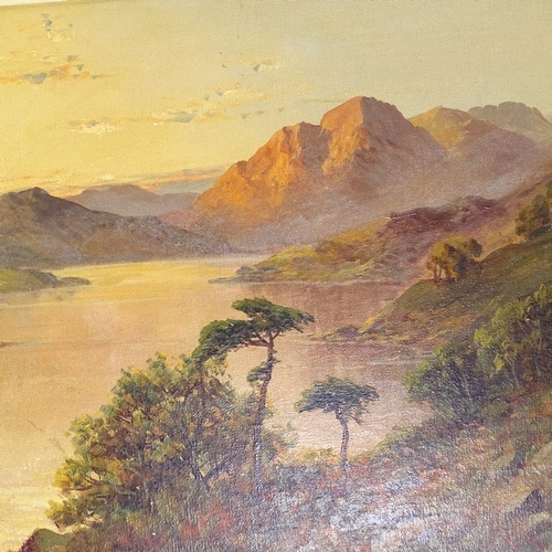 1077 - F E Jamieson, pair of oils on canvas, Highland Loch scenes, signed, title verso, 16