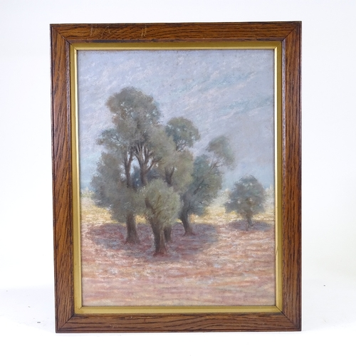 1099 - French School, coloured pastels, olive grove, unsigned, 18.5