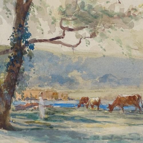 1135 - Hans Heysen, watercolour, cattle in a landscape, signed, 14