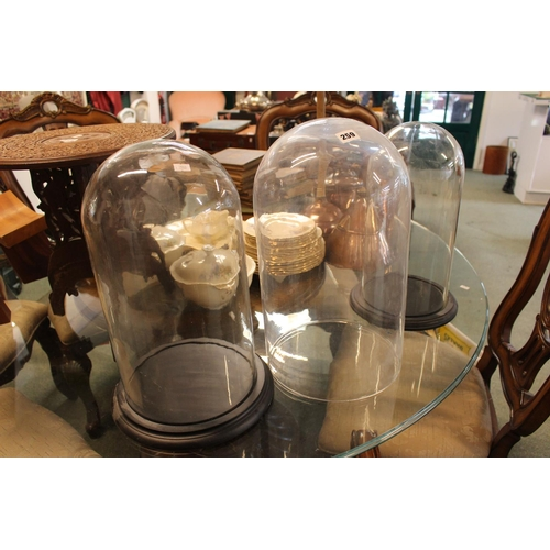 259 - 3 Large Glass Taxidermy domes (2 with bases)...