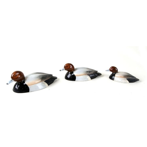 40 - A graduated set of three Beswick Peter Scott Approved Pochard ducks (3)....
