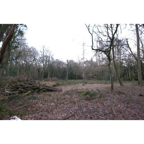 12 - Plot of Land D at Church Lane Warlingham - Surrey – CR6 9PG    Guide Price- £20,000 Guide Plus + Buy...