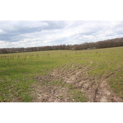 15 - Plots of land at Long Reach Ockham Woking GU23 6PG   Plot A255  Guide plus + Buyers premium.  Ideal ...