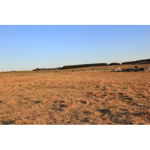 28A - Land off The A30 at Hole cross Bolventor Launceston PL15 7TX   Guide Price £25,000  Guide Plus + Buy...