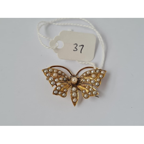 37 - AN ANTIQUE EDWARDIAN HALF PEARL SET BUTTERFLY BROOCH IN 15CT GOLD
