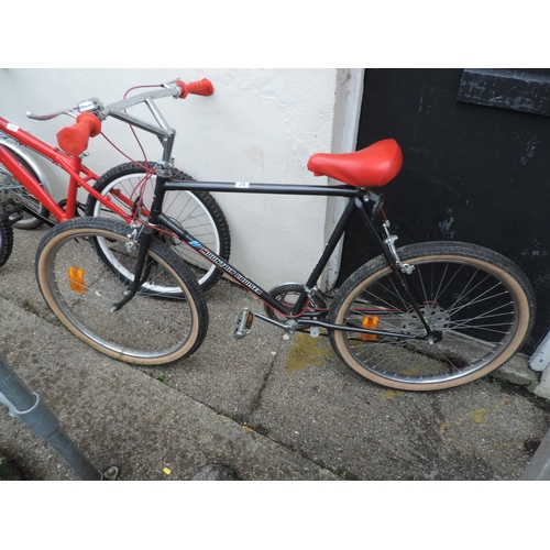 24 - Mountain Cruiser bicycle...