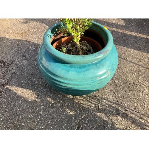 47 - Glazed Planter