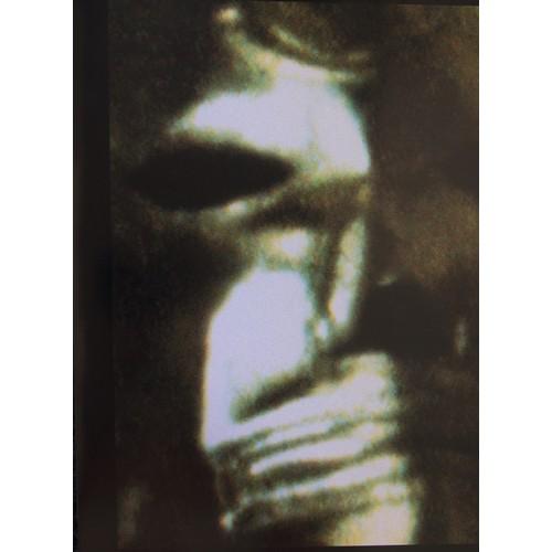 8 - Vivienne Westwood, Colour Photographs form the Venus Portfolio (2)...