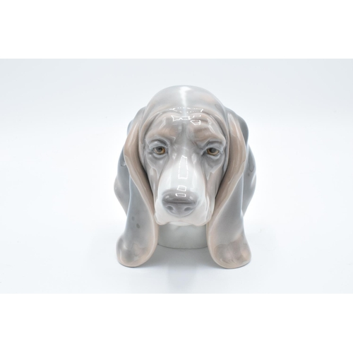55 - Lladro dogs head bust of a Beagle (1990s)...