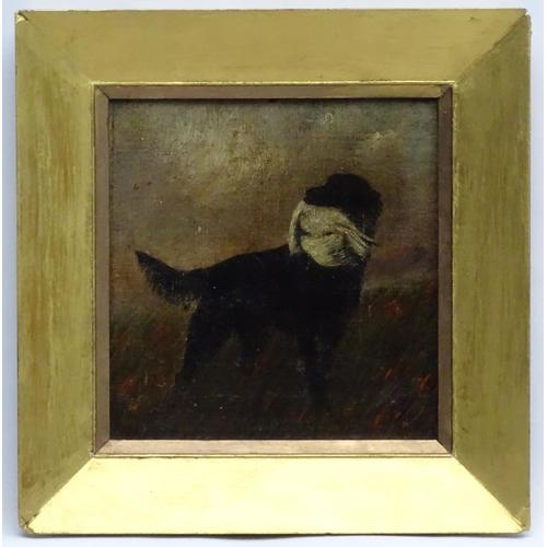 120 - W Sharrocks  1922 Canine School, Oil on canvas board, Black labrador Retriever dog holding a retriev...