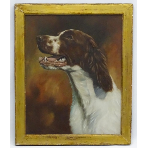 124 - Jason Moore XX Canine School, Oil on canvas board Gun Dog Portrait, Purdey the Springer Spaniel, Sig...