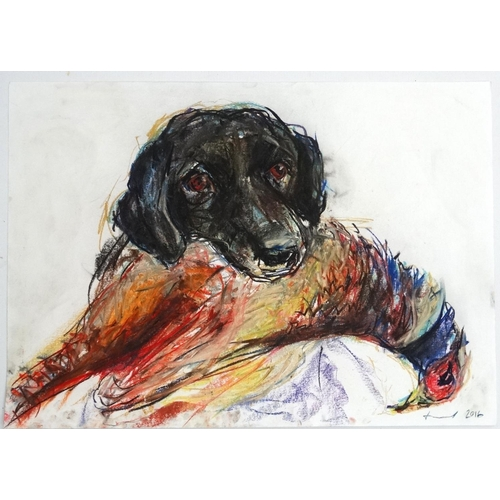 128 - Lucie Trarieux XX, Pastel, Black Labrador holding a Cock pheasant in its mouth, Signed and dated low...
