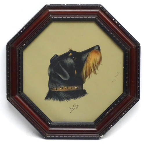 134 - After Amy Scott (1862-1950) Canine School, Coloured print Dog Portrait,  ' Jaffy ' a Long haired Bla...