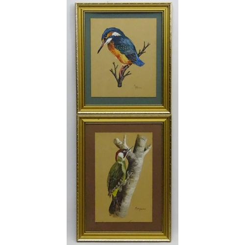 94 - Mary Parsons XIX-XX Avian Portraits, Gouache and watercolour , two birds, Green Woodpecker and a Kin...