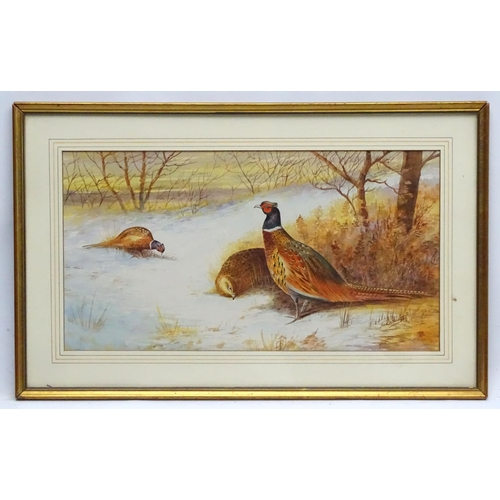 97 - Frank D Harrington XIX-XX, Watercolour, Pheasants in the snow, Signed lower right. 10 1/4 x 19 1/4''...
