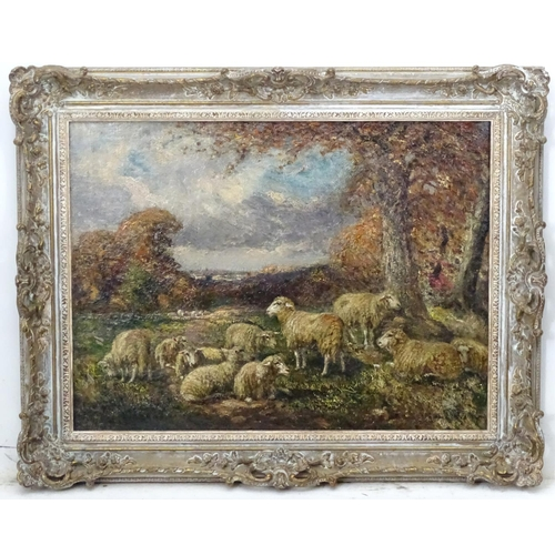 16 - William Macbride (1856-1913), Scottish, Oil on canvas, Sheep in a landscape, Indistinctly signed low...