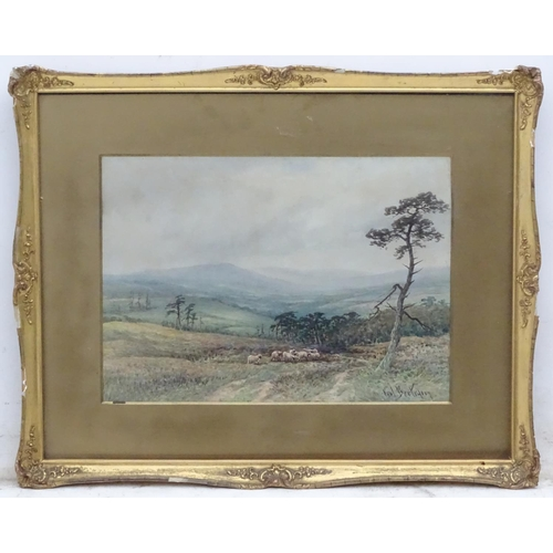43 - Paul Bertram (1833-1901), Watercolour, Sheep in a rolling landscape, Signed lower right. 10 x 14''...