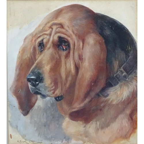 50 - Alfred William Strutt (1854-1924), Canine School, Oil on board,  Head of a Bloodhound dog,  Signed l...