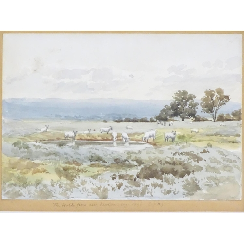 53 - Indistinctly initialled, XIX, English School, Watercolour, The Wolds from near Newton...,  A landsca...