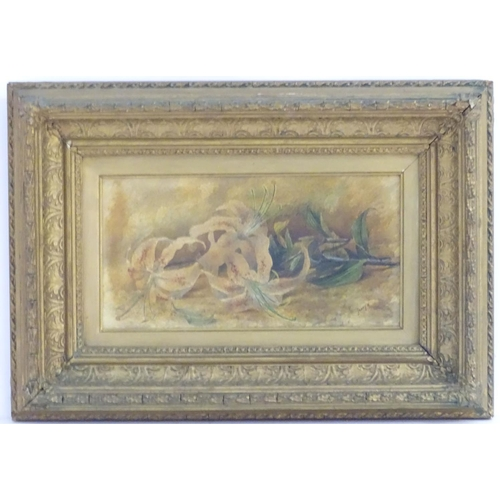 36 - J Booth, XIX-XX, Watercolour, A still life study of lilies. Signed lower right. Approx. 6