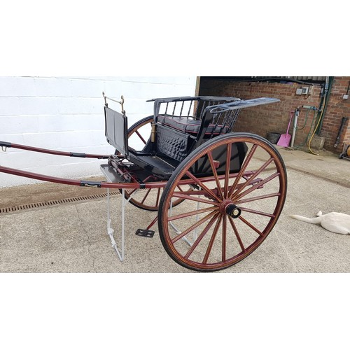 1194 - Horse-drawn Carriage :  An early 20thC stick back pony show gig by J. A Lawton of Liverpool. To suit...