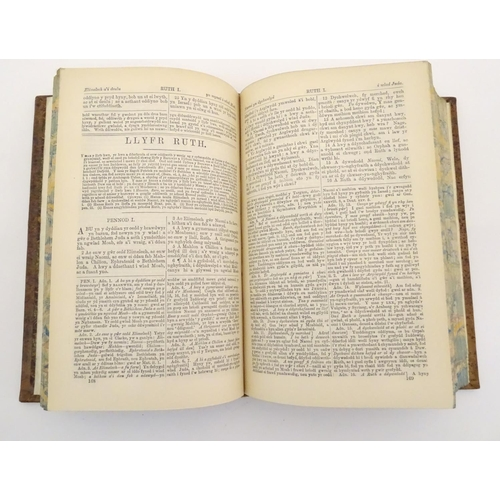 690 - Books: Deonglydd Berniadol, by John Jones,  c1890, Welsh language translations of the Old and New Te...