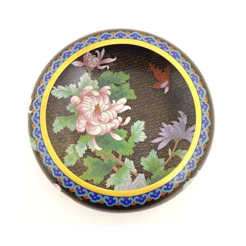1036 - An Oriental cloisonne bowl depicting chrysanthemum flowers and birds. Approx. 3