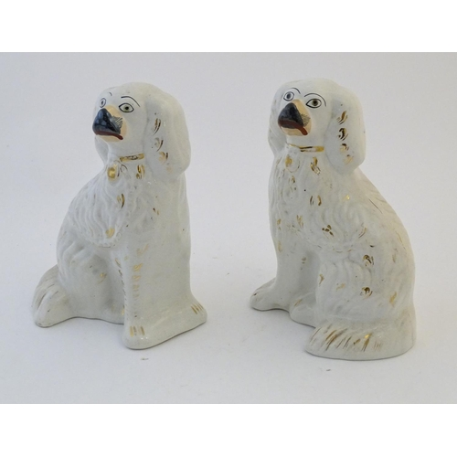 60 - A pair of Staffordshire pottery spaniel dogs with gilt highlights. Approx. 10